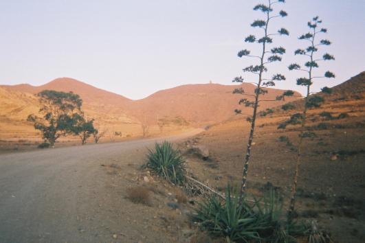 Parque natural Cabo de Gata - Níjar