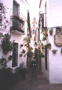 Córdoba - La Calleja de las Flores.