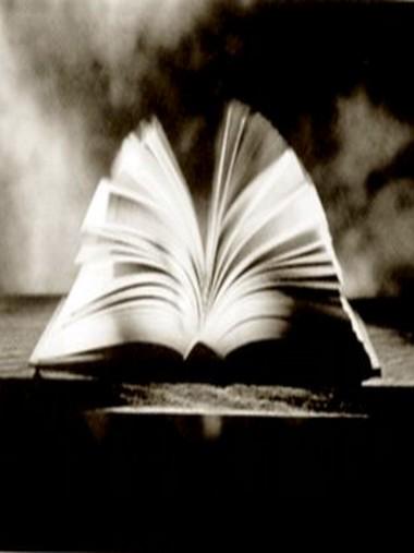 ... leer es curiosidad ...