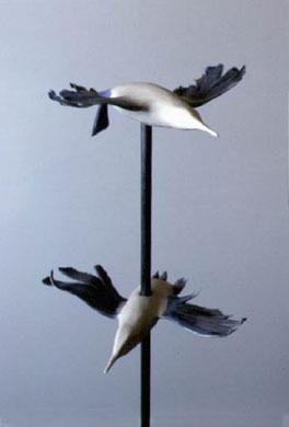 <font size=4><strong>*/ Pájaros de barro ...</strong></font>